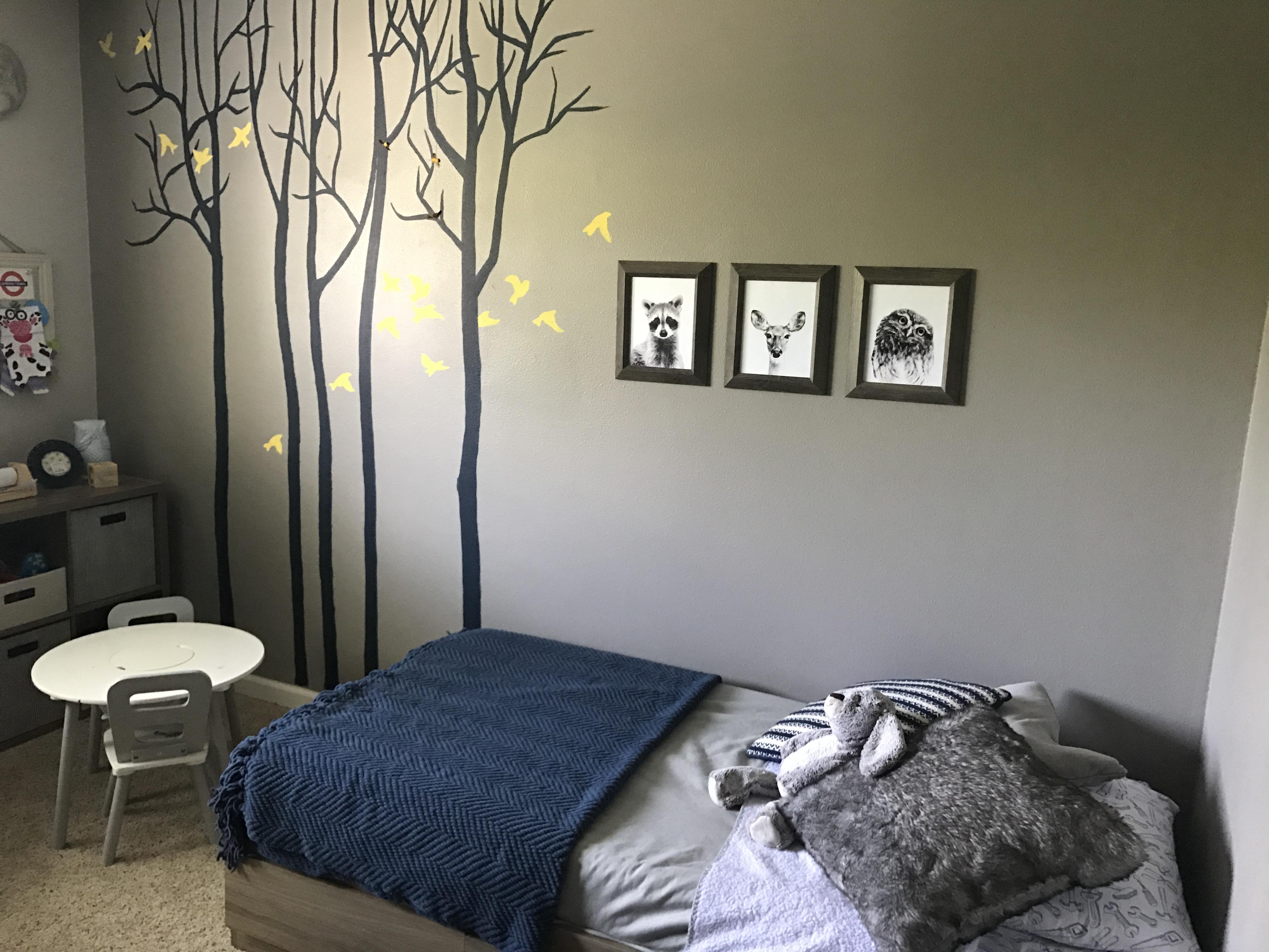 Cam's Big Boy Room & Bed